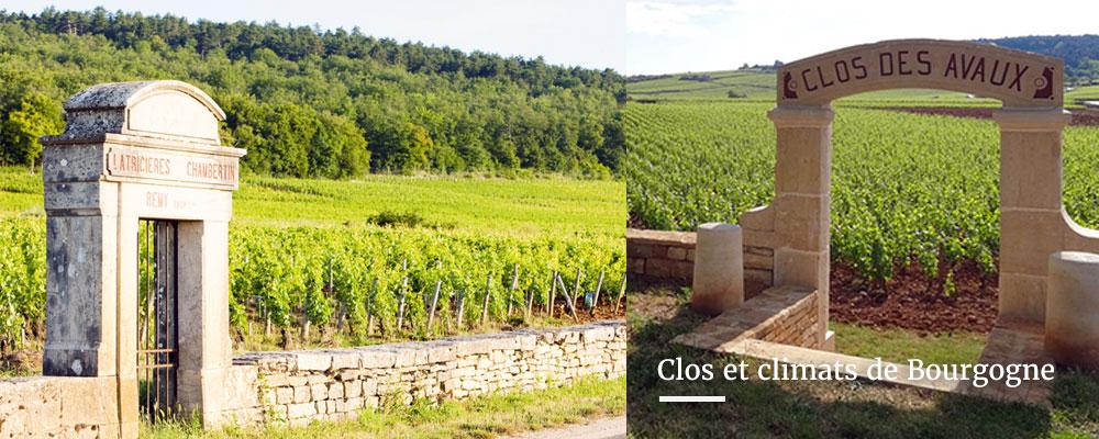 Clos et climats de Bourgogne